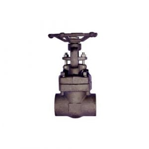 Forged Steel Gate Valve A105 Class 800#